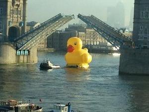Fever PR's rubber duck stunt